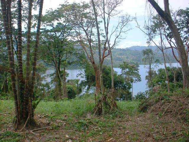 Bocas del Toro land for sale 8